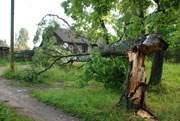 Летний апокалипсис обесточил 123 населенных пункта Смоленщины