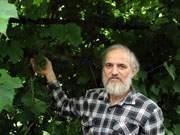 Виноградарь Герей Абакаров