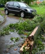 Ураган в Смоленске