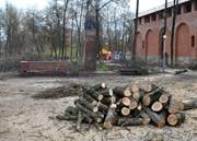Парк Пионеров в Смоленске