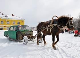 Гибрид лошади и автомобиля. Фото Геннадия Дубино