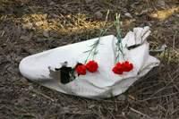 Какие мероприятия пройдут в Смоленске в годовщину катастрофы Ту-154