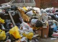 Смоленская область тонет в горах мусора