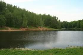 Разрешат ли смолянам купаться в Реадовском озере