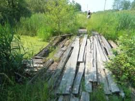 Смоленская область: Память в болоте не утопишь