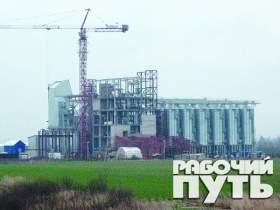 О том, как москвичи «подложили свинью» смолянам