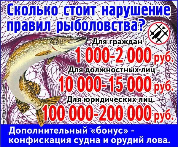 штрафы за ловлю в запрет