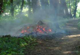 В Смоленске произошел пожар на кладбище