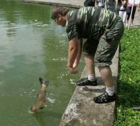 В пруд Лопатинского сада выпустили рыб