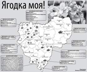 Ягодные места Смоленской области