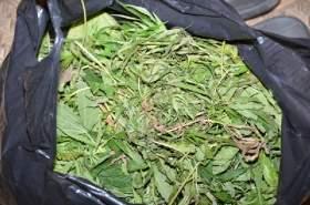 В Смоленской области задержали наркоторговца