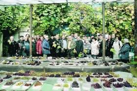 В Смоленске прошел десятый конкурс виноградарей