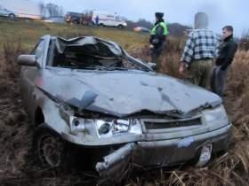 В Смоленской области в ДТП с лосем пострадал водитель
