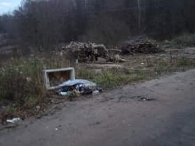 Почему власти не защищают смолян от мусорной напасти