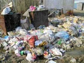 В Смоленской области объявлен год борьбы с мусором