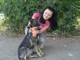 Смоленские власти утвердили места для выгула собак