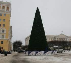 Главную городскую елку Смоленска разберут после холодов