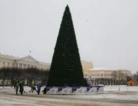 Главную елку Смоленска уберут на этой неделе