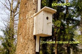 Дом культуры микрорайона Гнездово объявил конкурс «Лучший птичий домик»
