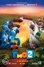 «Рабочий путь» дарит бесплатный билет на мультфильм «Рио-2» в кинотеатре «Современник»