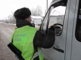 С начала года смоленские пограничники задержали более 200 нарушителей границы