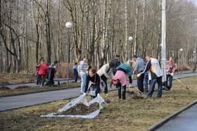 26 апреля в Смоленске пройдет общегородской субботник