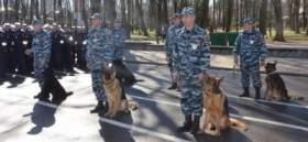 Смоленские полицейские перешли на усиленный вариант несения службы