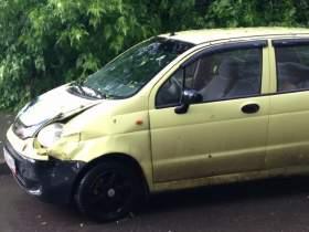 В Смоленске во время града дерево упало на машину