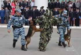В Сафонове показали, какой должна быть полиция