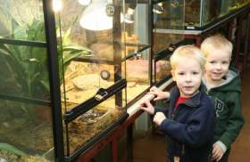 Смоленский зоопарк продавать не собираются