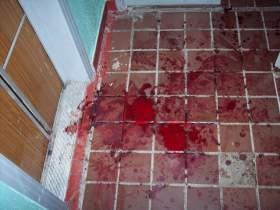 В Смоленске по «горячим следам» задержали убийцу