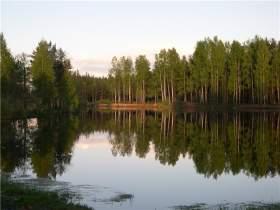С начала купального сезона в водоемах Смоленской области утонули семь человек