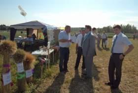 В Смоленском районе прошел «День поля»